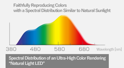 "Spectral Distribution of an Ultra-High Color Rendering ""Natural Light LED"""