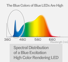 Spectral Distribution of a Blue Excitation High Color Rendering LED