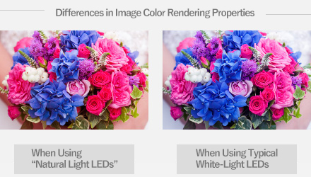 Differences in Image Color Rendering Properties