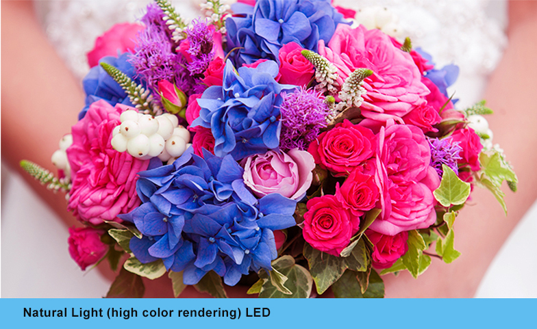 Natural-light (high color rendering) LED