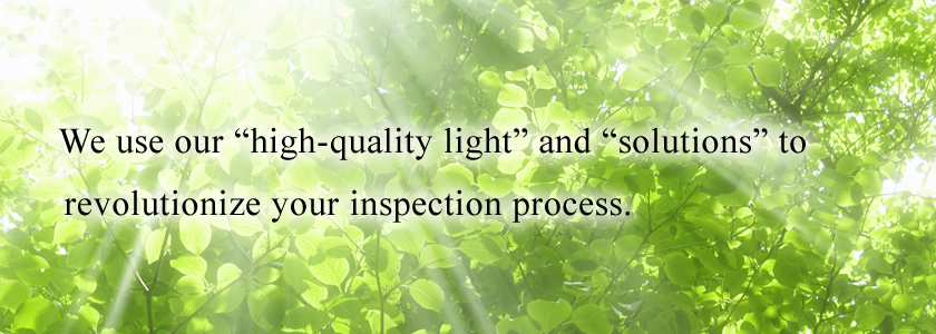 We use our high-quality light and solutions to revolutionize your inspection process